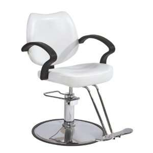 Modern Fashion Classic Hydraulic Barber Chair Styling Salon Beauty 3W