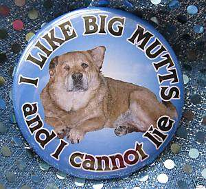 Like BIG MUTTS & I cannot LIE dog badge button pin M