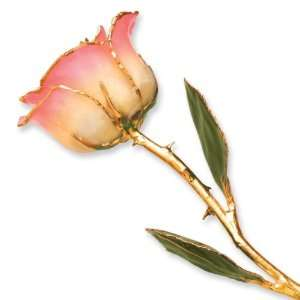 Long Stem Dipped 24k Gold Trim White Pink Rose In Gold