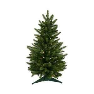 24 x 16 Frasier Fir Dura Lit 50CL 90T Arts, Crafts